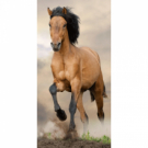 Dětská osuška Horse brown